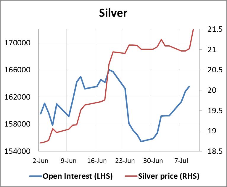 Silver110704